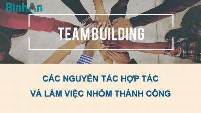 """Bản Tin Đào Tạo: """"Các nguyên tắc hợp tác và làm việc nhóm thành công"""""""